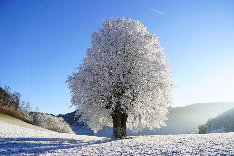 Tips voor de winterfotografie