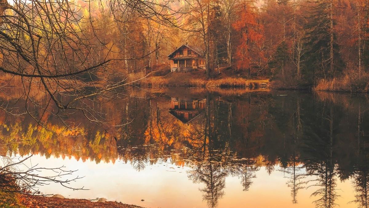 Fotograferen van de herfst