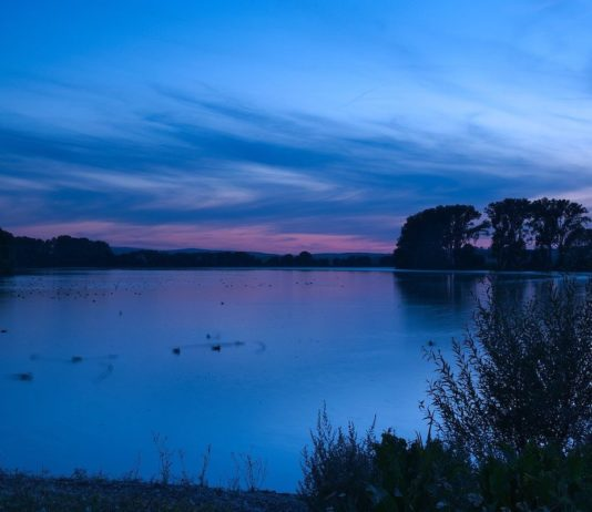 7 tips voor betere foto's in het donker
