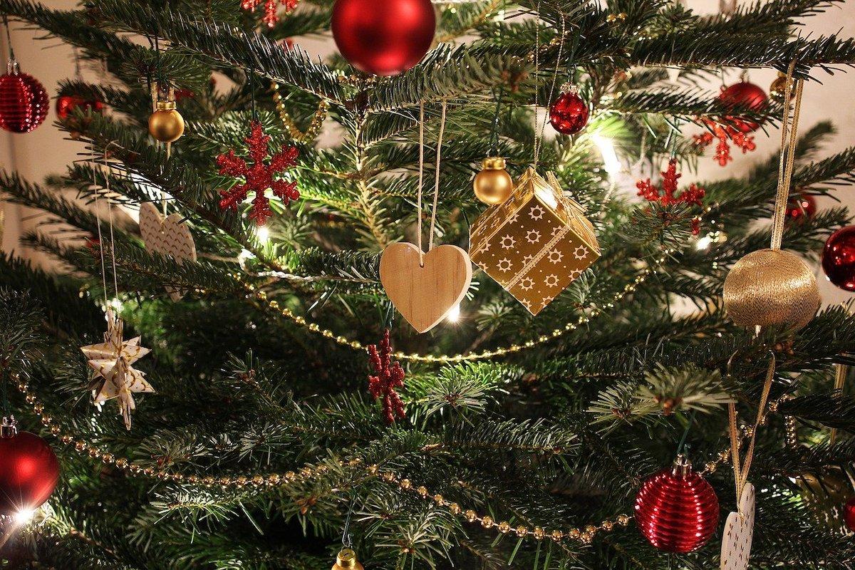 Kerstboom fotograferen
