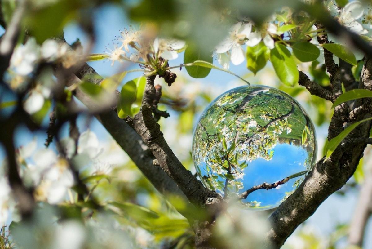 Fotograferen met een lensball